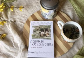 L'idioma di Casilda Moreira di Adrian Bravi